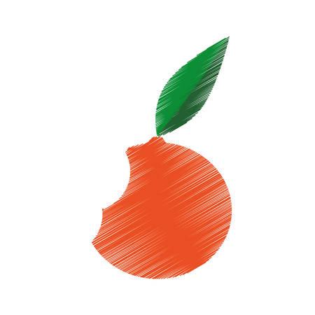 hand colored drawing orange bite icon vector