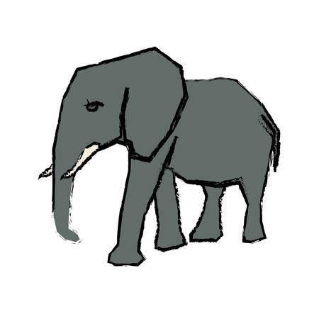 elephant african animal icon vector illustration graphic design