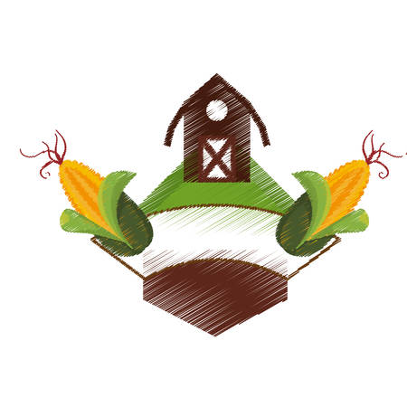 barn wood: frame with farm barn and corn icon over white background. colorful and sketch design. vector illustration