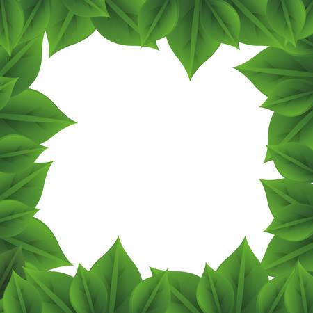 leaves pattern frame icon image vector illustration design