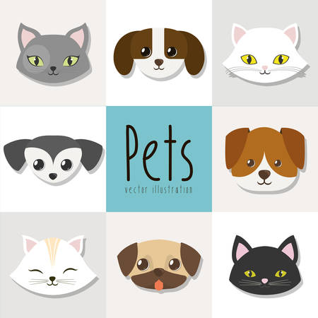 trusting: dogs and cats pet related emblem image vector illustration design