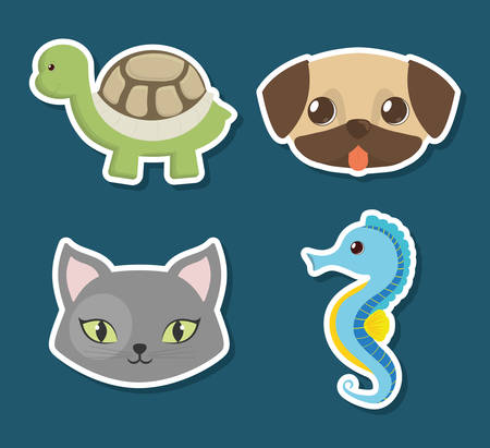 seahorse: turtle dog cat seahorse pet related icon image vector illustration design Illustration
