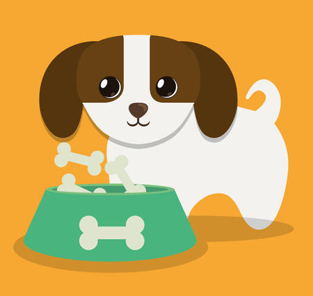 trusting: dog pet care related icons image vector illustration design