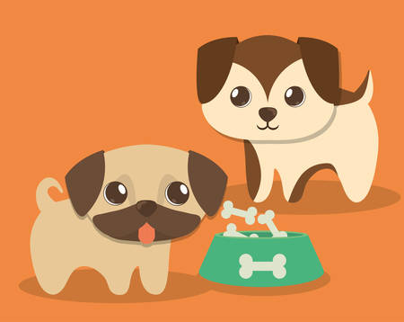dog pet care related icons image vector illustration design