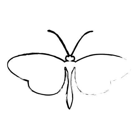 butterfly silhouette icon image vector illustration design