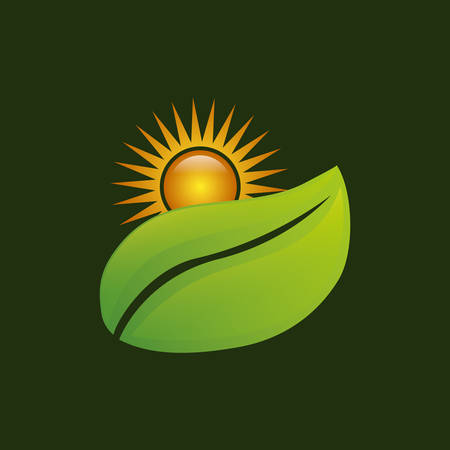 Leaves ecology plant icon vector illustration graphic design