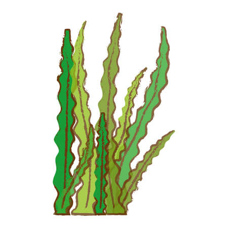 algae or seaweed icon image vector illustration design