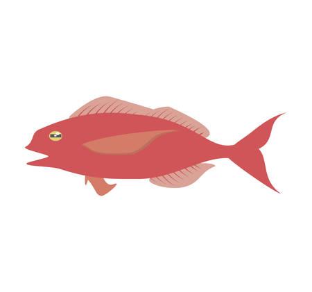 cod fish sealife food ocean vector illustration eps 10 Illustration
