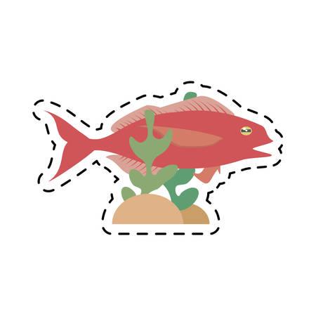 cod fish sealife food ocean coral vector illustration eps 10 Illustration