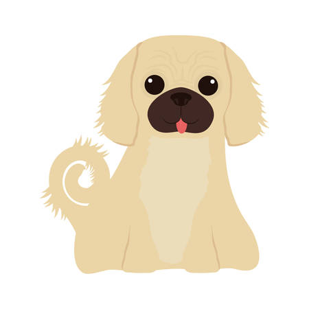 cartoon cute dog icon over white background. coloful design. vector illustration Illustration