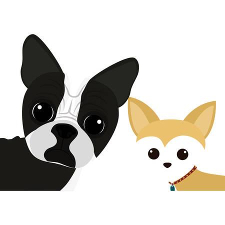 cartoon cute dogs icon over white background. coloful design. vector illustration Illustration