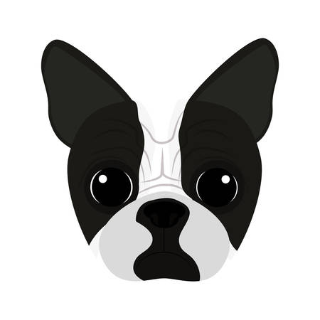 trusting: cute dog face icon over white background. colorful design. vector illustration Illustration