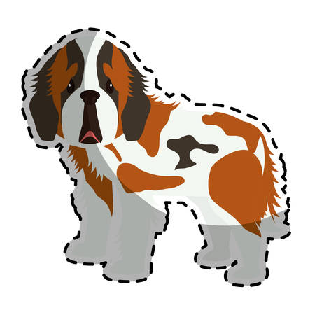 trusting: st bernard dog breed icon image sticker vector illustration design