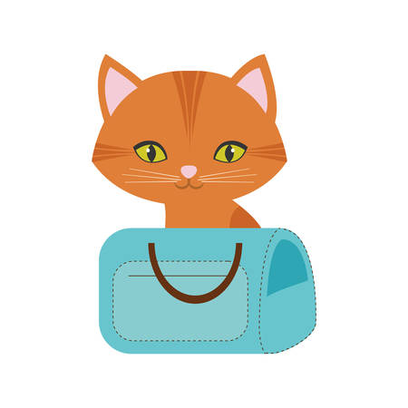 orange cat green eyes blue pet carrier bag travel vector illustration eps 10 Illustration
