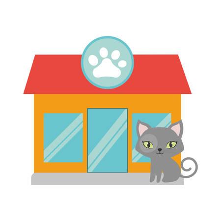 green eyes: gray small cat green eyes pet shop facade paw print vector illustration eps 10 Illustration