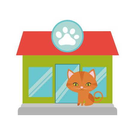 green eyes: orange cat green eyes pet shop facade paw print vector illustration eps 10