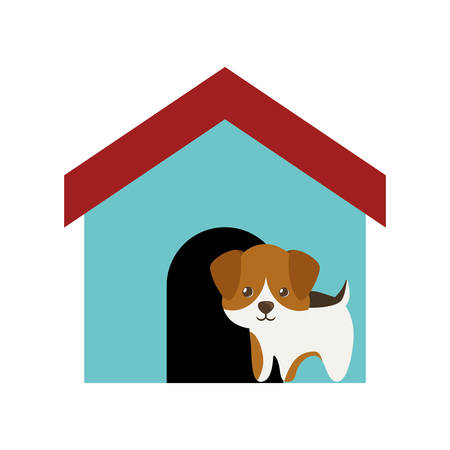character traits: dog canine young standing colored house vector illusration eps 10