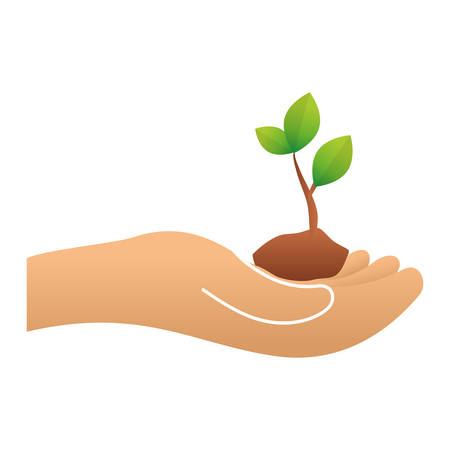 conservancy: Green plants conservancy with hands image, vector illustration