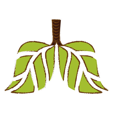 Color lungs branches with leaves image, vector illustration