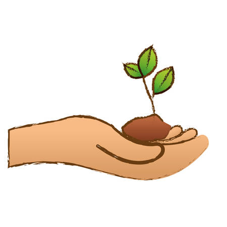conservancy: Color plants conservancy with hands image, vector illustration