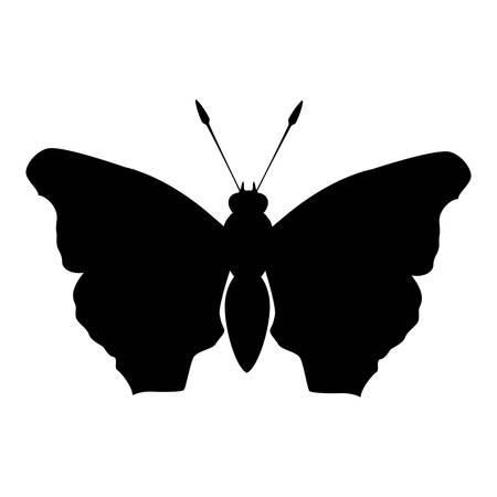 feminist: black butterfly feminist defense design, vector illustration
