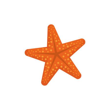 Sea star isolated icon vector illustration graphic design