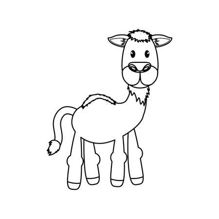 Camel animal cartoon icon vector illustration graphic design