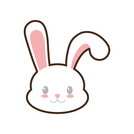 Rabbit Face Stock Photos And Images 123rf