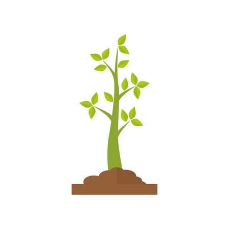 Nature plant ecology icon vector illustration graphic design Illustration
