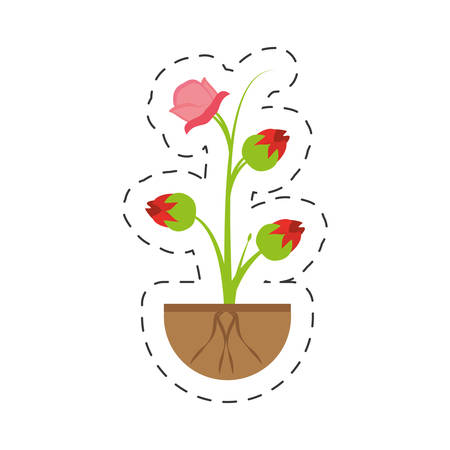 pink rose flower sprout grow vector illustration eps 10