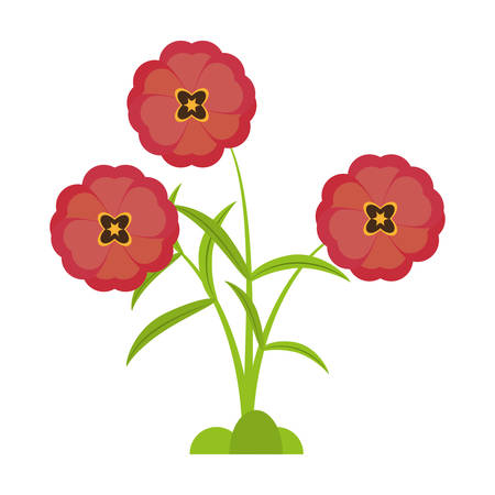 buttercup flower bloom spring vector illustration eps 10