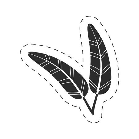 drawing feathers decorative thin line vector illustration eps 10