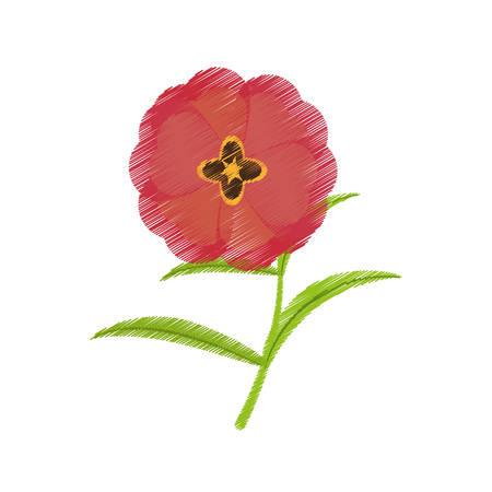 drawing buttercup flower bloom spring vector illustration Illustration