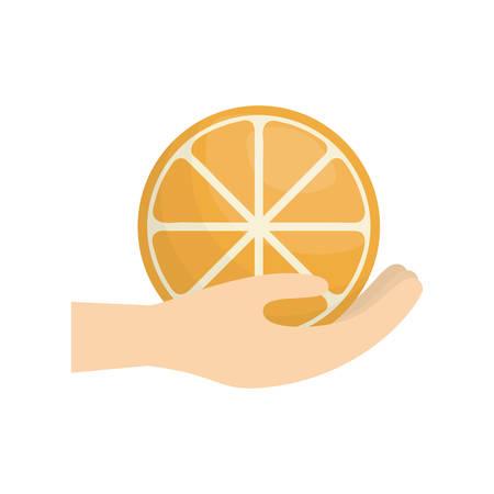 hand holding orange fruit vector illustration Illustration