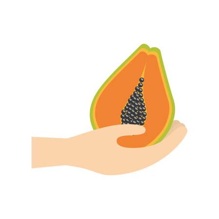 hand holding papaya fruit vector illustration eps 10
