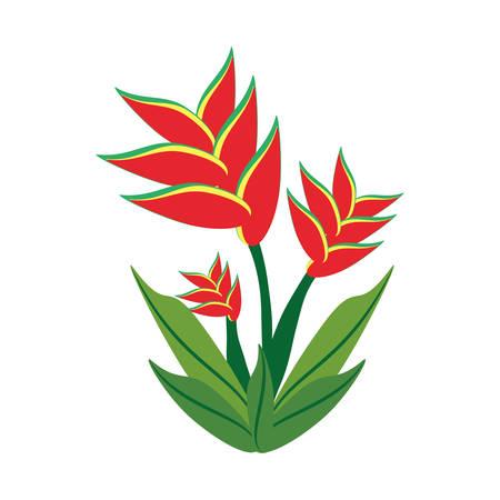 heliconiaceae: heliconia flower spring image vector illustration eps 10 Illustration