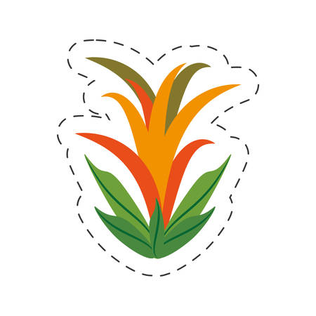 cartoon guzmania flower image vector illustration eps 10