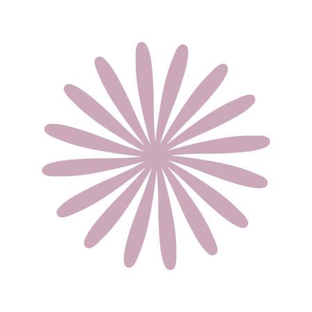 star anise flower decoration vector illustration eps 10