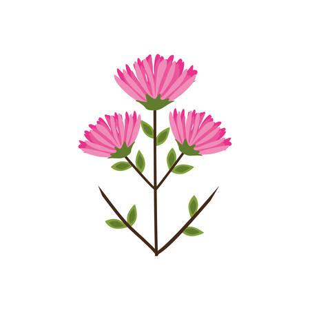 pink flower bunch image vector illustration eps 10