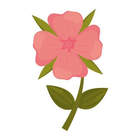 geranium flower stem leaves vector illustration eps 10