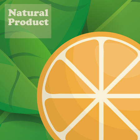 orange natural product poster design vector illustration eps 10 Illustration
