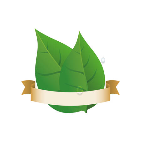 Green ecology label icon vector illustration graphic design