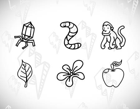 primate biology: science class and school scribbles cartoons drawing vector