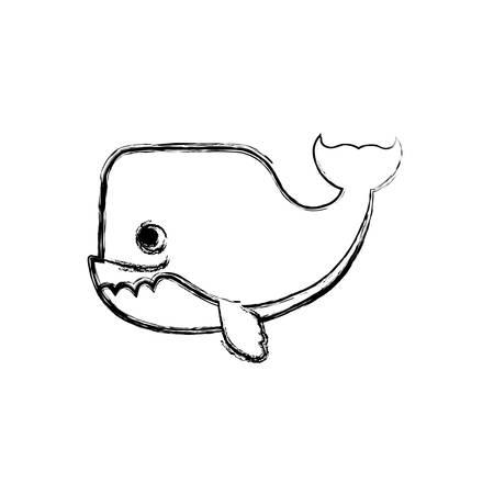 whale cartoon drawing animal vector icon illustration