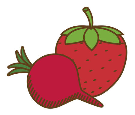 market gardening: strawberry and beetroot fruit over white background. colorful design. vector illustration