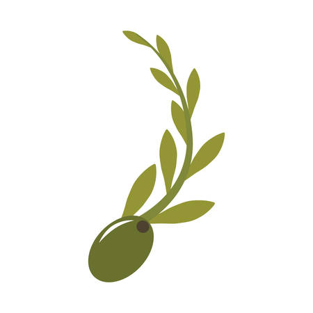 green olive seeds with leaves icon over white background. vector illustration