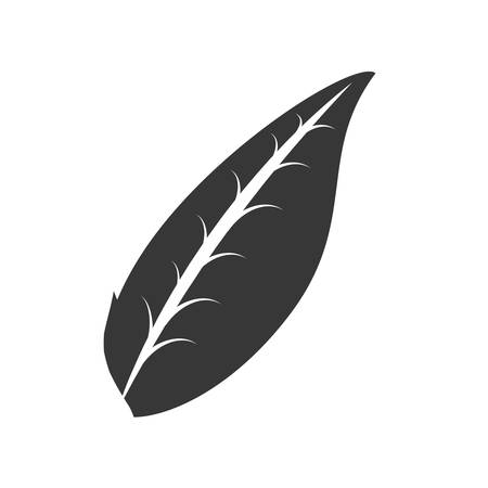 organic leave food emblem outline vector illustration eps 10