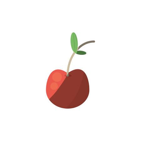 harvest apple diet shadow vector illustration Illustration