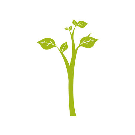 Natural plant ecology icon vector illustration graphic design
