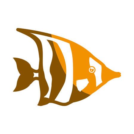 Fish sea yellow,symbol icon vector illustration graphic design